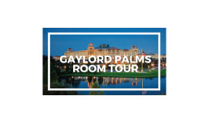 Caryn Clark The Hip Chick Voice Gaylord Palms Logo